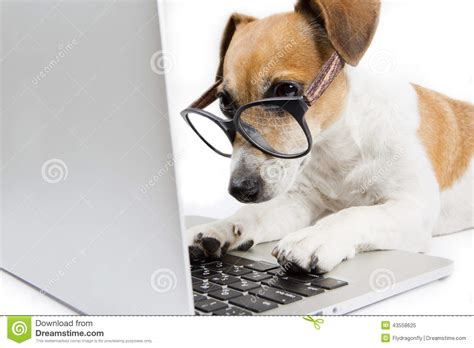 on computer computer stock photo image 43558625