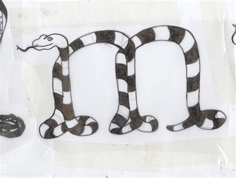 Type Of Snake 3 Letters