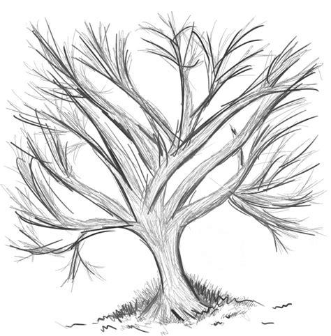 Drawing N Sketches by Anime Tree Sketch Random Black N White Tree