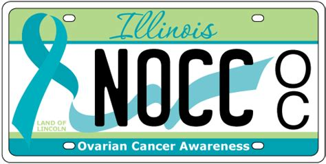 Cyberdriveillinois Vanity Plate by Ovarian Cancer Awareness License Plates