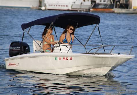 marina del rey harbor boat rental so much fun renting the boston whaler sport 130 yelp