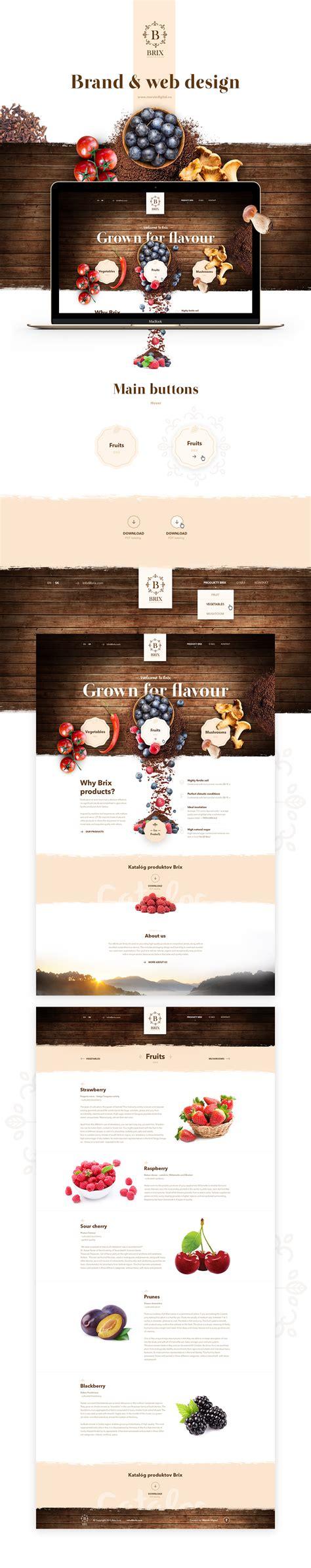 web layout behance web design on pinterest web design web design layouts