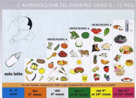 svezzamento tabella alimenti come procedere per lo svezzamento da 0 a 12 mesi infoperte