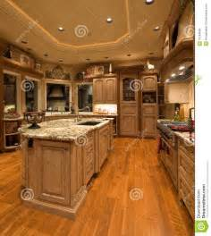 luxury kitchen royalty free stock image image 16184606