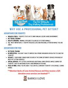 Cool Beds For Dogs Blog Pet Sit Pros South Orange County Ca The Pet