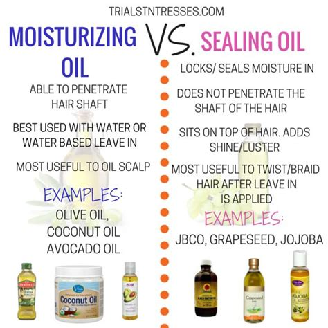 What Type Of Olive Is Best For Hair by 17 Best Ideas About Hair Journey On