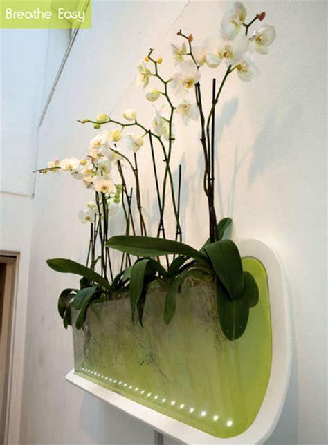 Pot Khusus Anggrek tips menanam anggrek secara hidroponik