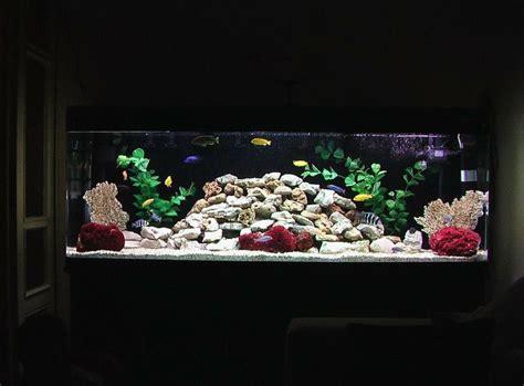 aquarium design for cichlids new rock design for my african cichlid tank fishy