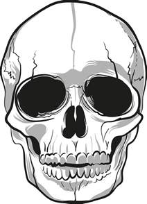 skull tattoo png transparent free images png only