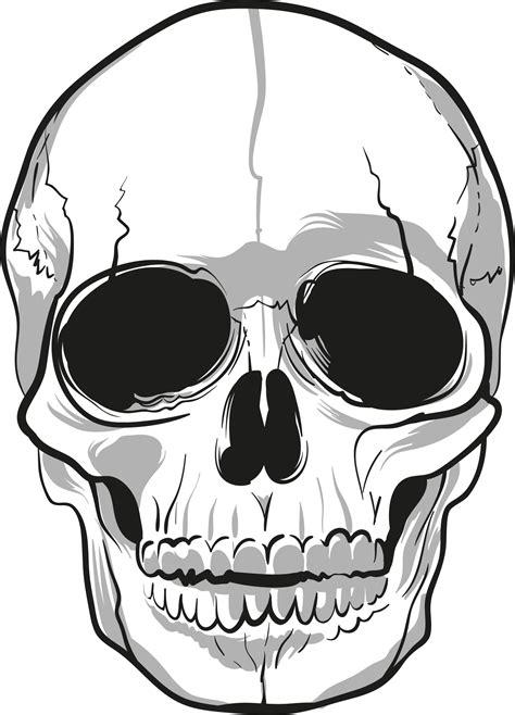 Tattoo Skull Png | tattoo line art skull www pixshark com images