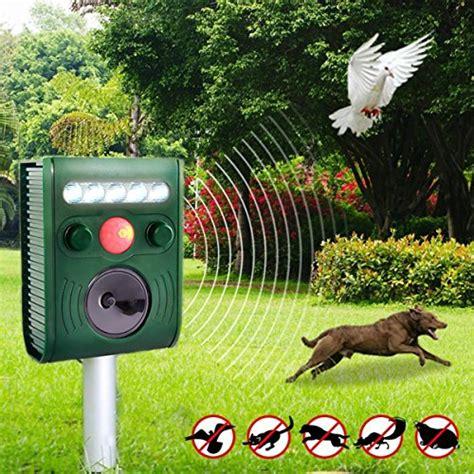 repellente gatti giardino repellente ultrasuoni drillpro impermeabile mole repeller