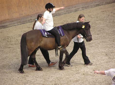 The Hose Boy Mental therapeutic horseback