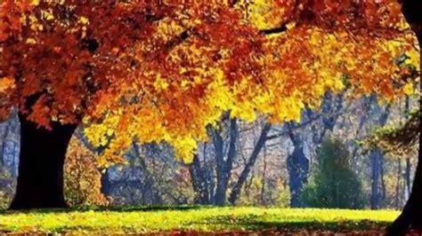 imagenes bellas naturaleza hermosas imagenes de la naturaleza youtube