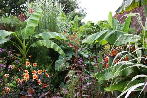 exotic gardening related keywords suggestions for exotic gardens