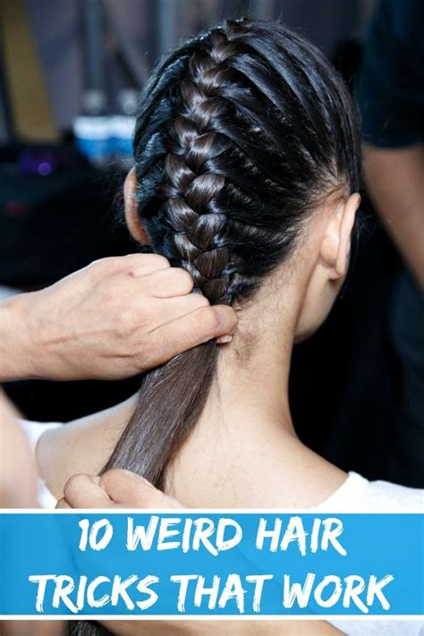 Hair Dryer For Lice 44 best lice prevention tips images on lice