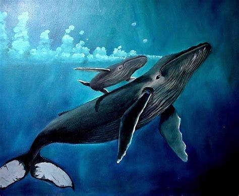 wallpaper cartoon wale whale wallpapers wallpaper cave