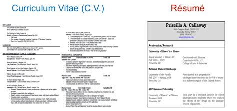 what s the difference between resume and cv resume templates for mac