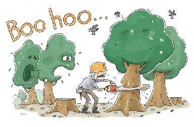 How Many Trees Are Cut To Make Paper - maybe you could try it in your area and get a better