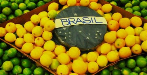 consolato portoghese in italia brasile traduzione asseverazione legalizzazione il