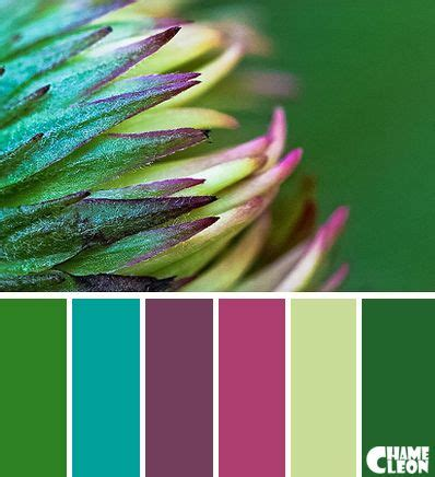 colours that go with green 25 best ideas about color palette green on pinterest