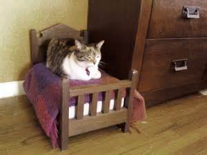 the purrfect bed for a cat