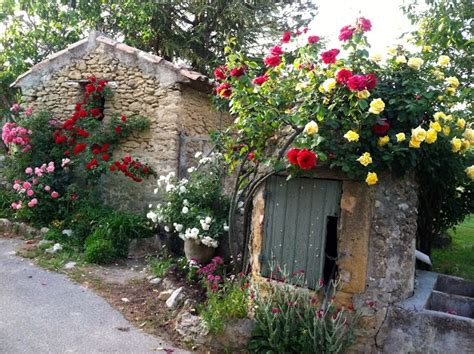 Rock Cottage Gardens Climbing Roses In The Villages Of Provence La Dolce Vita Living The In California S