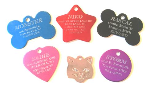 tags for pet tags differentiating pets from strays overnight pet tags