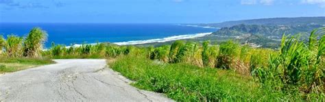 barbados attractions cherry tree hill