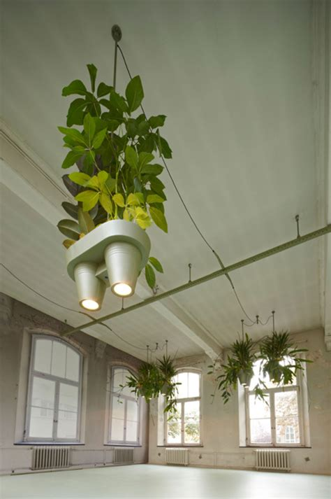 Plant Lighting by Amazing Plant Pots Lighting And Power Sockets Concept