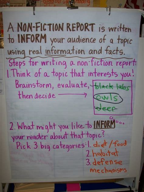 light on a hill informational text anchor charts 10 best images of informational writing anchor charts