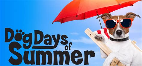 the days of summer the days of summer health secrets and tips