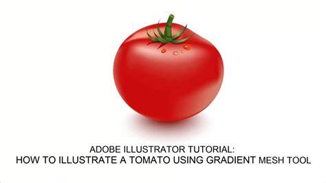 video tutorial   create  tomato vector  adobe