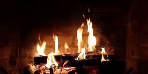 fireplace gifs gif find on giphy