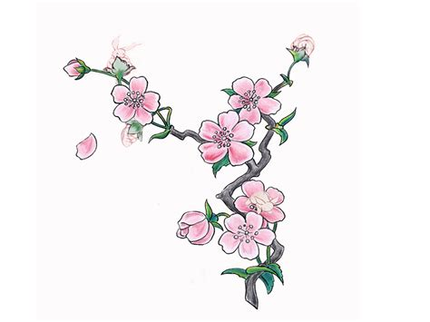 sakura tattoo design 5 new cherry blossom designs