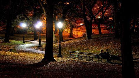 light parks park at wallpaper