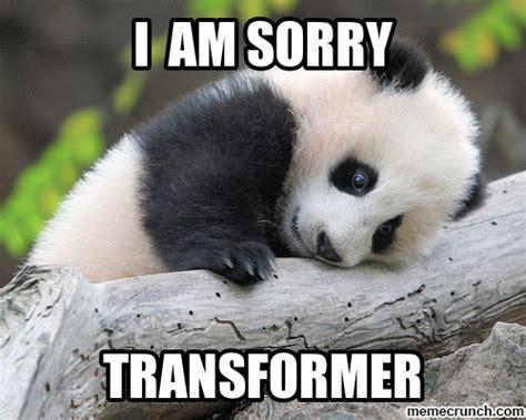I Am Sorry Meme - i am sorry