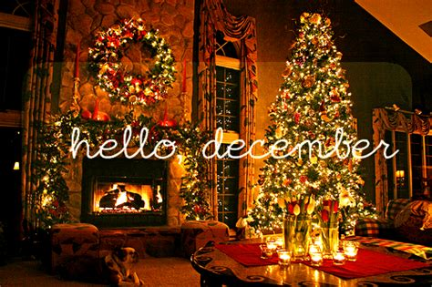 Hello December Image 1651414 By Lovely Jessy On Favim Com Hello Lights