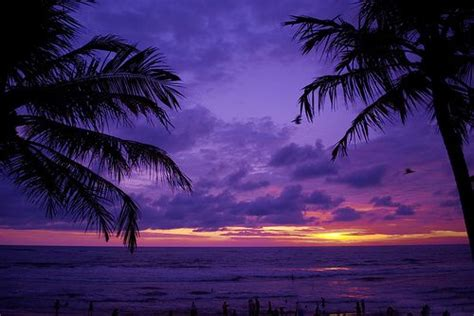 I Am Purple And I Am Beautiful by Best 25 Purple Sky Ideas On Purple Sunset