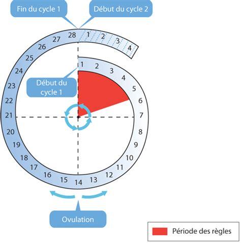 Is Calendario Masculine Or Feminine Cours De Sciences Devenir Homme Ou Femme Maxicours