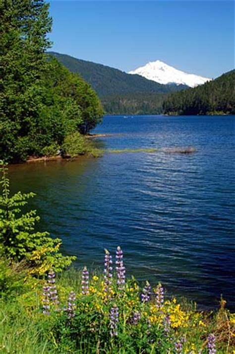 Oregon Records Free Search File Detroit Lake Marion County Oregon Scenic Images Marda0099 Jpg Wikimedia