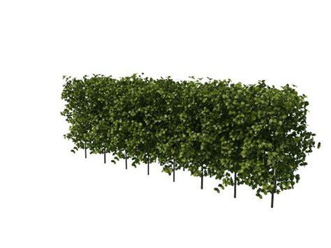 Topiary Bush - boxwood hedge plants 3d model 3ds max files free download modeling 29990 on cadnav