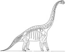 Dinosaur Bones Template by 7 Best Images Of Dinosaur Bones Printable Dinosaur Bone
