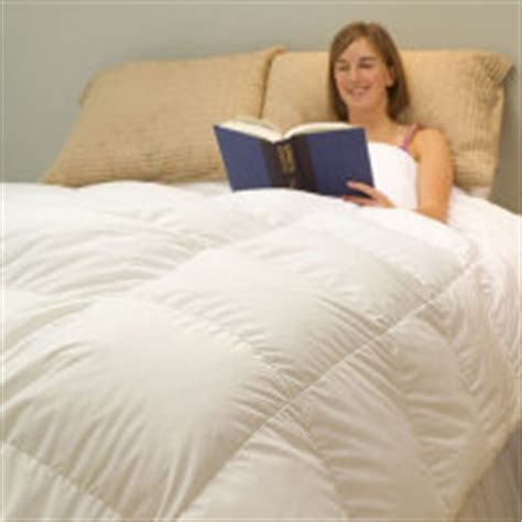 Most Expensive Comforter by Luxury Blankets Siberian White Goose Silk And Alpaca
