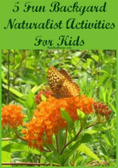 Backyard Naturalist by Backyard Naturalist Activities For Magical