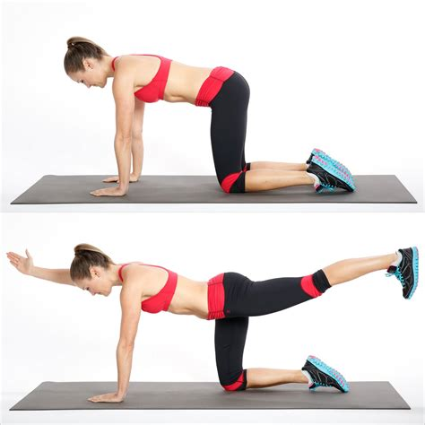 bird exercise how to do bird exercise for your back popsugar fitness