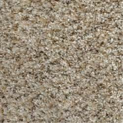 home depot carpet simply seamless posh 01 mediterranean 24 in x 24 in