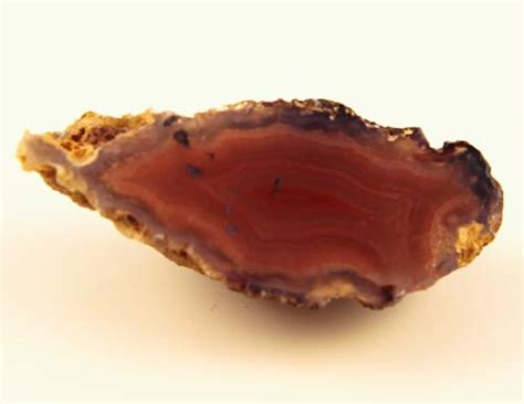 Agate 38ct 38ct beautiful agate geode mexico rg 2595
