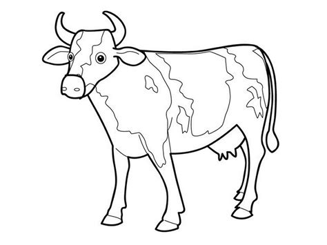 cow coloring pages free printable free printable cow coloring pages for kids