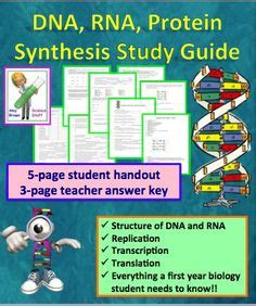 section 3 reinforcement dna pinterest discover and save creative ideas