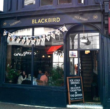 blackbird tea rooms brighton 25 best ideas about blackbird cafe on brighton stores brighton and brighton